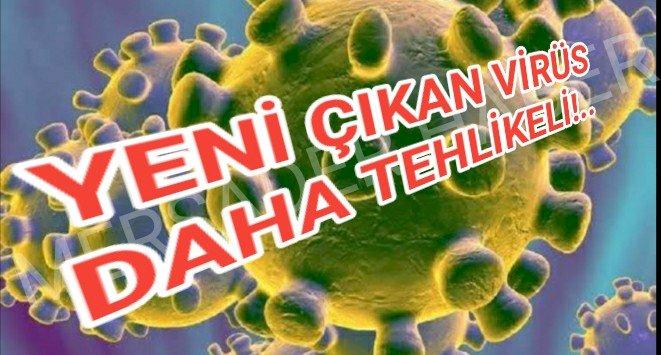 Vuhan'dan daha beter: Pekin virüsü