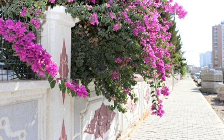 TOROSLAR'DA SOKAKLAR, BAMBAŞKA BİR GÖRÜNÜME KAVUŞTU
